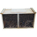 Package Bees 3 lb